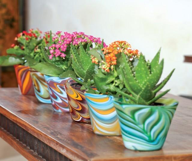 Flores Ideales para Decorar el interior de tu Casa